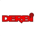Picture for category DERBI LEVERS