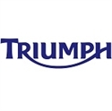 Picture for category TRIUMPH CABLES