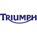 Picture for category TRIUMPH-AIR FILTER ELEMENT